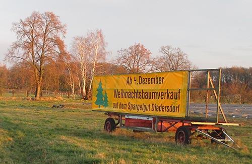 Schild Weihnachtsbaumverkauf