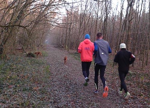 Läufer und Hunde in LIchtenrade