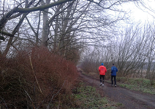 Läufer im Winter bei Kleinbeeren