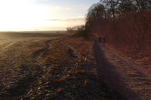 Läufer auf dem Weg nach Diedersdorf
