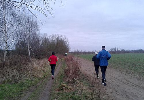 Läufer beim langen Lauf