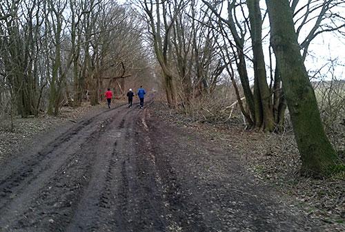 läufer auf dem Rudower Damm neben dem Rudower Fließ