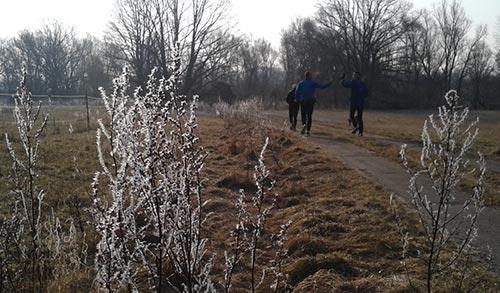Raureif auf den Pflanzen am Feldrand und Läufer