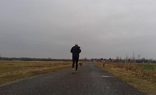 Läufer in den wiesen bei Ruhlsdorf