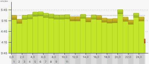 Pace-Grafik für den 25-km-Lauf 2018: Sehr gleichmäßiges Lauftempo