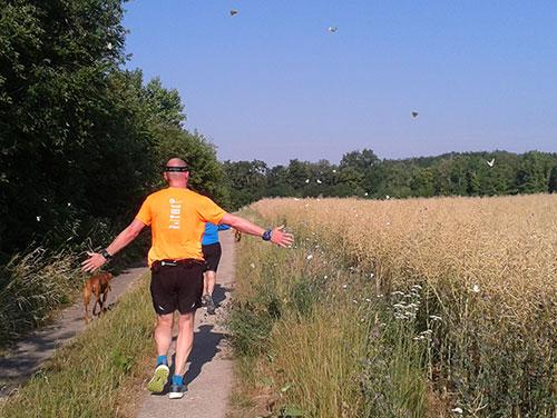 Läufer, Felder und viele Schmetterlinge