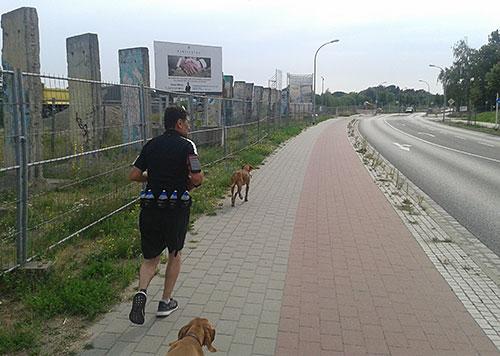 Läufer mit Hunden an der Zeppelinstraße in Teltow