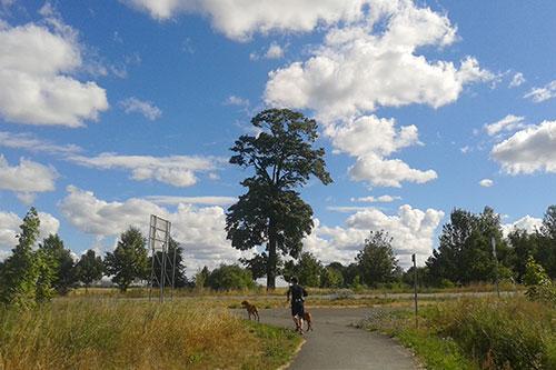 Läufer vor tollem Wolkenhimmel