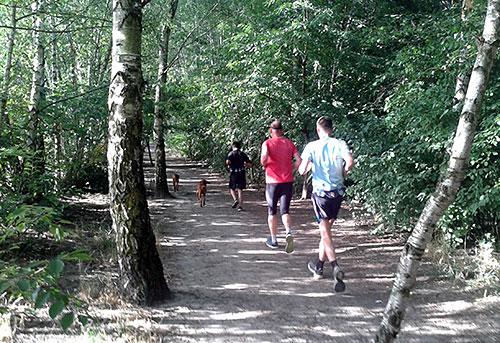 Läufer auf einem Waldweg