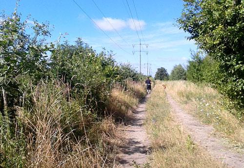Weg an der Bahntrasse Waßmannsdorf