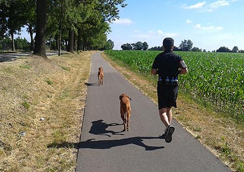 Läufer auf der Rudower Straße in Waßmannsdorf