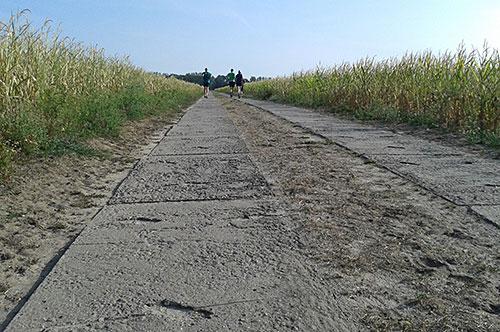 Laufen bis an den Horizont