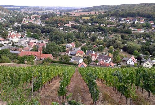 Blick auf Weinberg und das Unstrut-Tal