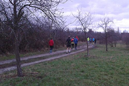 Läufer im Freizeitpark Marienfelde