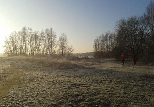 Läufer in Raureif-Winterlandschaft