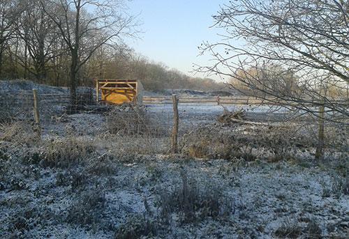 Raureif und zarter Schnee am wegesrand