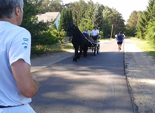 Eine Pferdekutsche kommt den Läufern entgegen