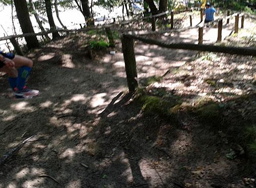 Steile Waldtreppe hinab