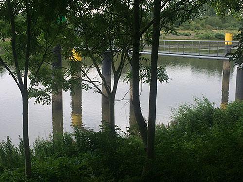 Weserufer mit Spiegelung