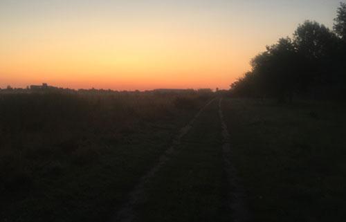 Sonnenaufgang über den Feldern im Freizeitpark Marienfelde