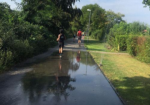 Kleingärtner haben Rasensprenger an die Strecke gestellt zur Erfrischung der Läuferinnen und Läufer