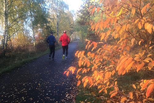 Läufer und oranges Herbstlaub