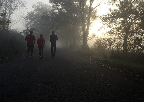 Läufer im herbstlichen Gegenlicht