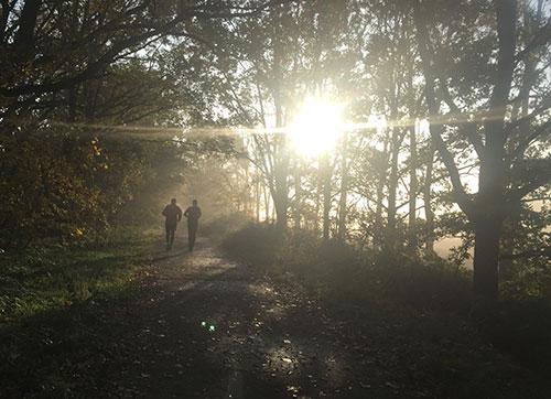 Läufer auf herbstlichem Weg im Gegenlicht