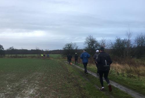 Läufer-Gruppe läuft um ein Feld herum
