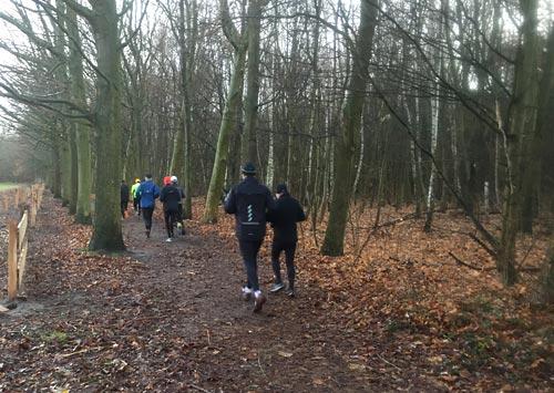 Läufer auf einem Waldpfad