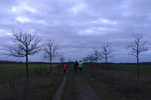 Läufer-Gruppe zwischen den Feldern im Berliner Süden