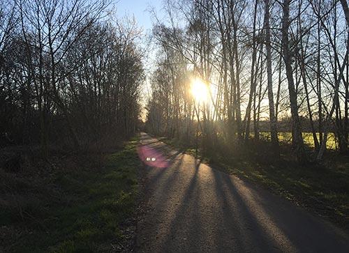Morgensonne über dem Berliner Mauerweg