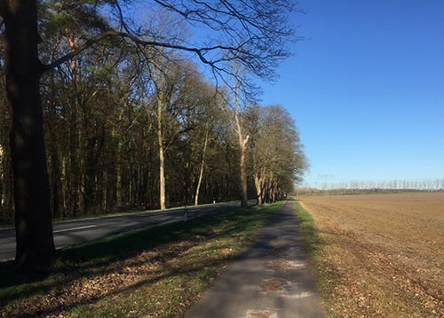 Weg von Diedersdorf nach Großbeeren
