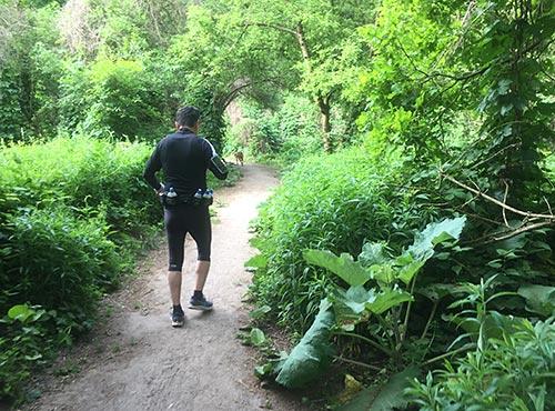Läufer auf dem Stahnsdorfer Ufer-Rundweg