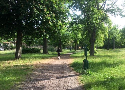 Läufer auf dem Stahnsdorfer Dorfanger