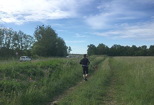 Läufer auf dem Grünen Weg neben der neuen Straße L77n