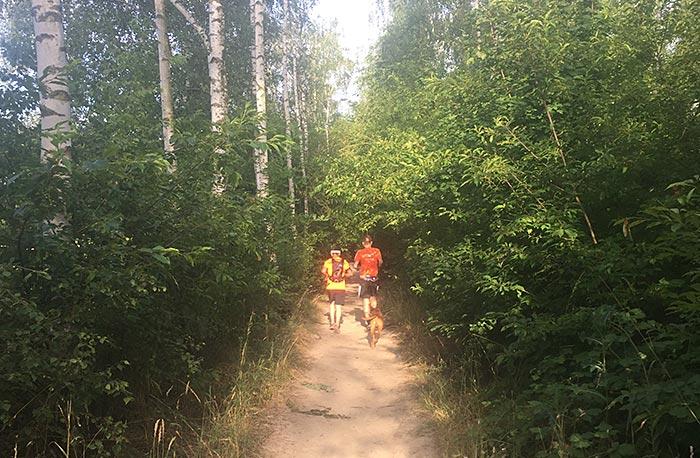 Läufer mit Hund auf Pfad zwischen Bäumen