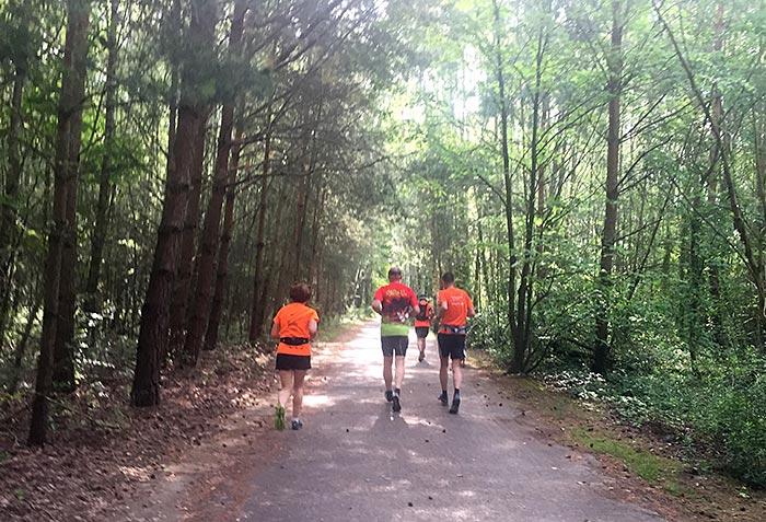 Läufer kurz vor Waldblick