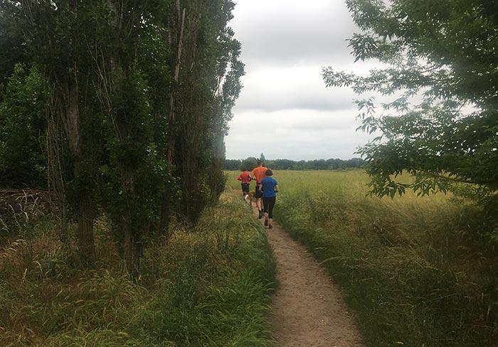 Läufer in der Marienfelder Feldmark