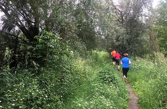 Läufer inmitten von grüner Natur