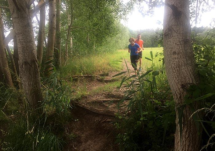 Läufer auf Pfad mit vielen Baumwurzeln