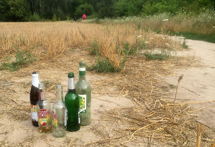 Leere Alkoholflaschen auf abgemähtem Feld