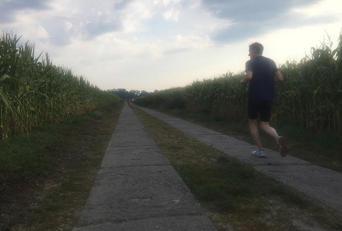Läufer zwischen Maisfeldern