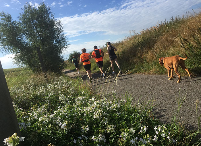 Läuferinnen, Läufer und Hund
