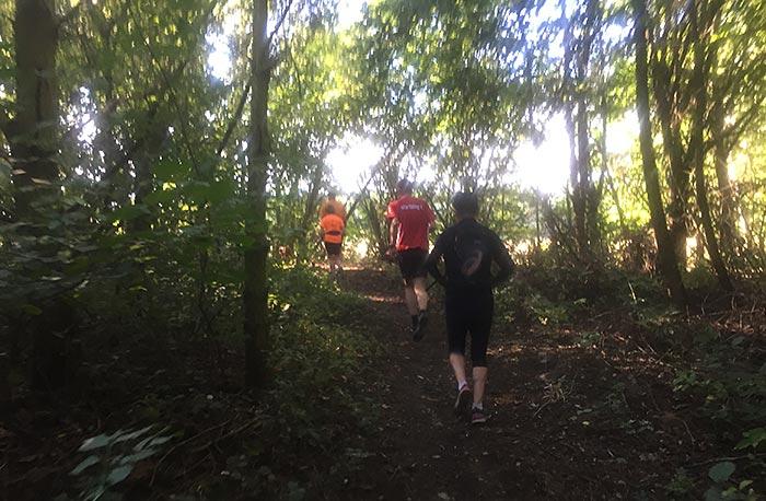 Läufer auf Waldpfad am Herthateich