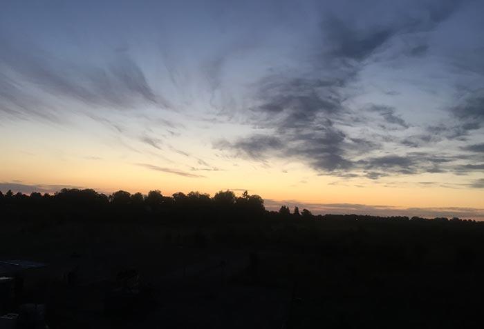 Waldsilhouette vor dramatischem Sonnenaufgang