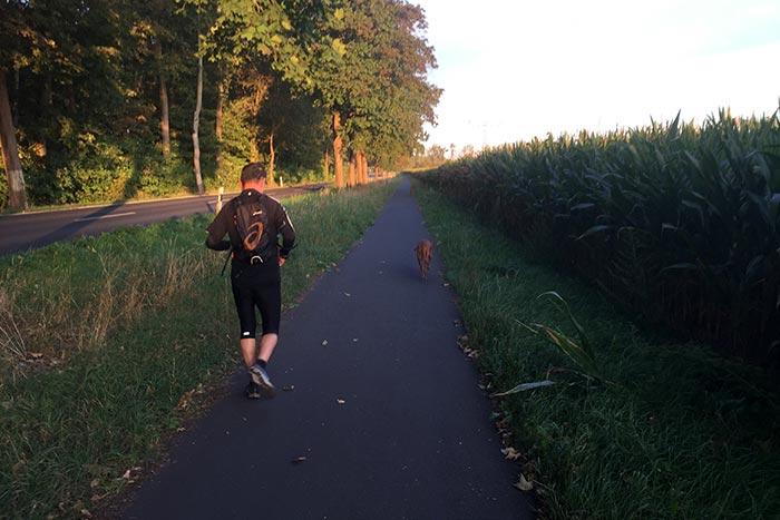 Läufer mit Hunden auf dem Radweg Richtung Großbeeren