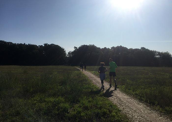 Läufer-Gruppe auf einem Weg zwischen Feldern oder Wiesen
