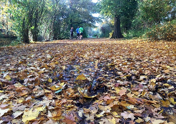 Herbstlaub und Läufer
