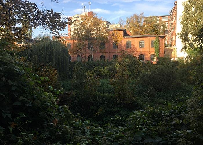Backsteingebäude hinter dichter Vegetation